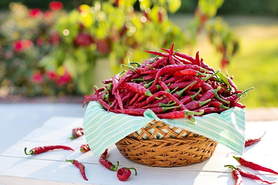 beneficiile ardeiului rosu Cayenne